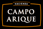 logo_campo.png